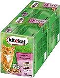 Kitekat Katzenfutter Nassfutter Adult für erwachsene Katzen Markt Mix in Gelee, 48 Portionsbeutel (2 x 24 x 100g)