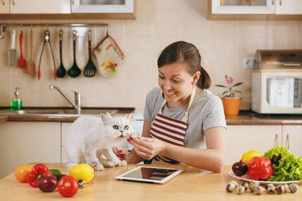 Schädliche Lebensmittel für Katzen