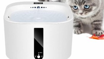 VEMTONA Trinkbrunnen für Katze – Der intelligente Katzenbrunnen