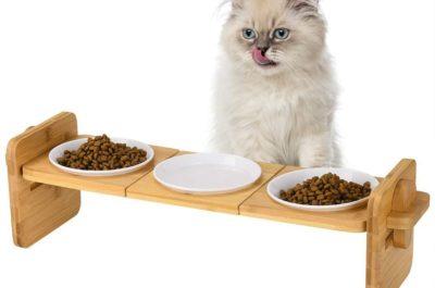 Komplette Katzennapf Ausstattung