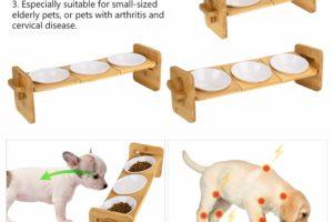 Erhöhter ergonomischer Futterplatz für Hunde und Katzen