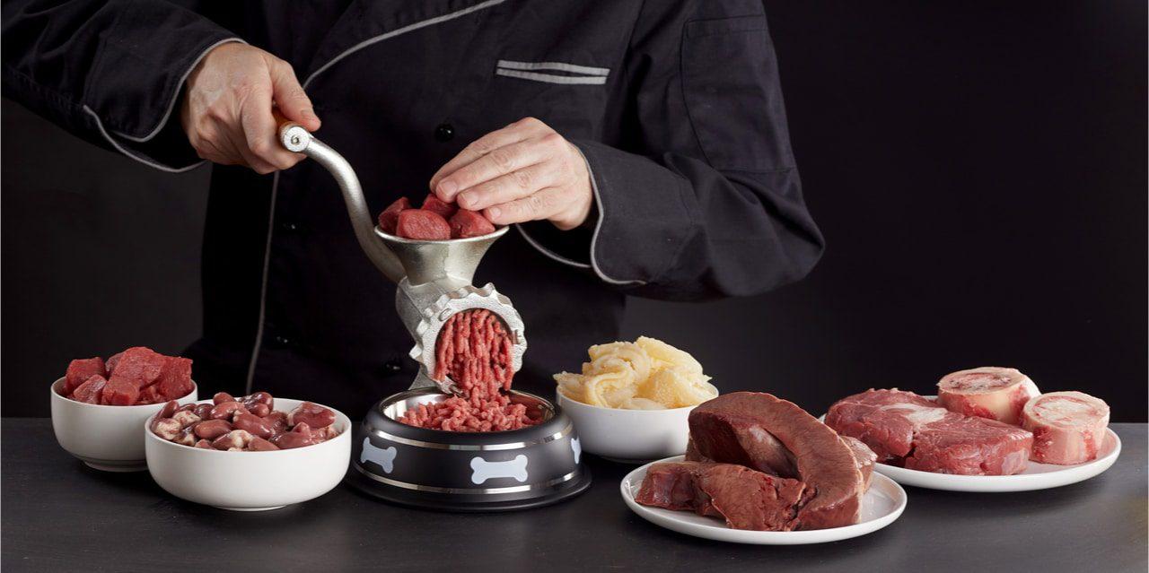 barfen-frostfleisch-katze